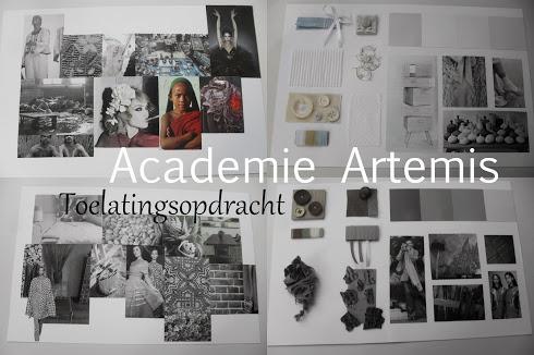 Academie Artemis toelatingsopdracht