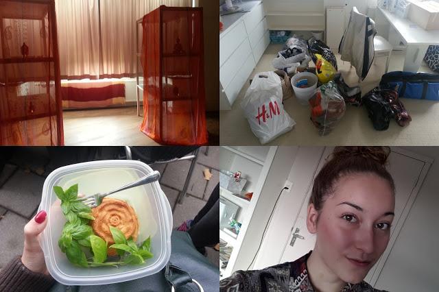 My Life Besides Blogging   week 37
